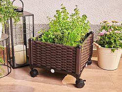 Box na kvety Delimano Grow